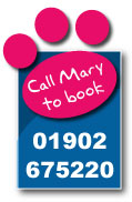 Call mary from Woodfarm Kennels and Cattery